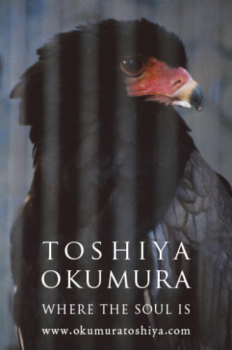 10_06_okumura001