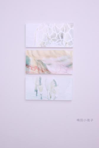 11_02_shinjukutokyo020