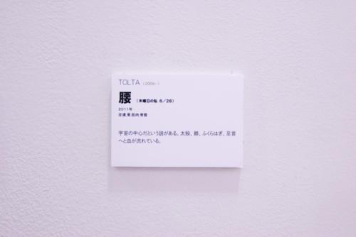 11_06_hifutochizu053