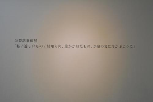 14_02_sakanashi013