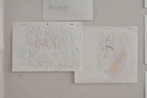 15_07_aiso025
