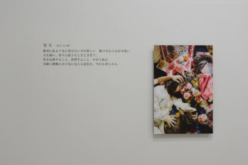 15_07_masudapiroyo_zenki029