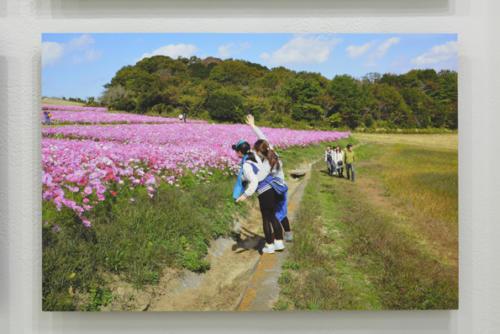 15_11_yorunotaka036