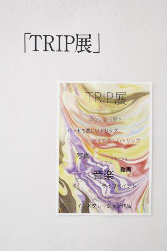 17_06_tripten022