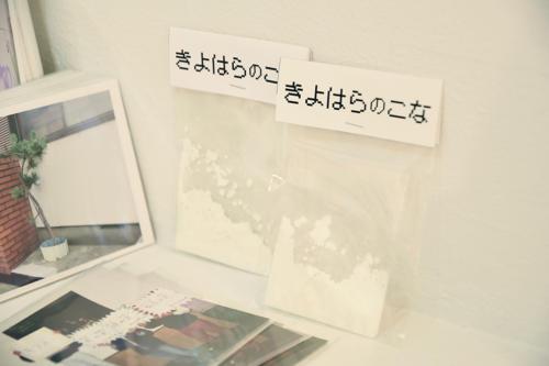 17_08_niwasakiptdx042