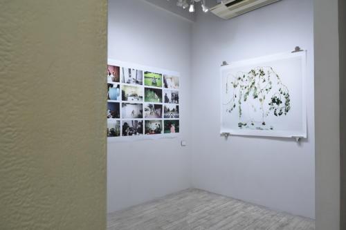 17_08_shashinnojikan062