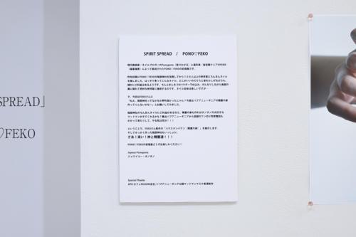 17_09_ponofeko014
