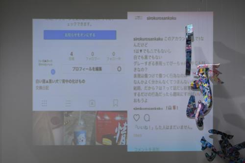 17_11_shiroinekokuroiinusenakanobakemono018