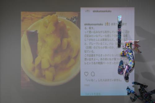 17_11_shiroinekokuroiinusenakanobakemono019