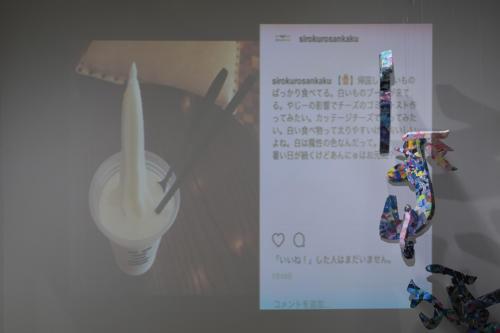 17_11_shiroinekokuroiinusenakanobakemono020
