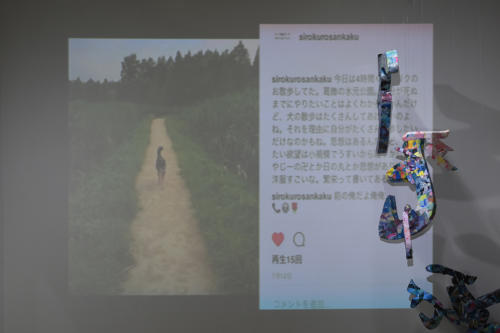 17_11_shiroinekokuroiinusenakanobakemono023