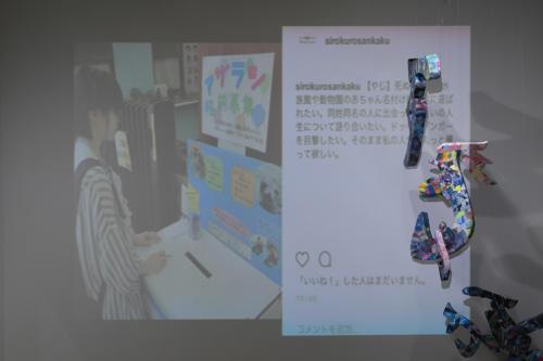 17_11_shiroinekokuroiinusenakanobakemono025