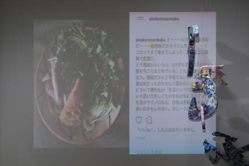 17_11_shiroinekokuroiinusenakanobakemono028