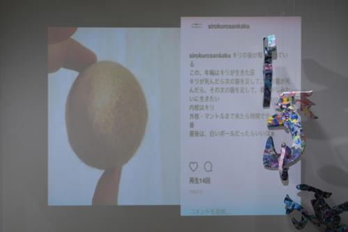 17_11_shiroinekokuroiinusenakanobakemono032