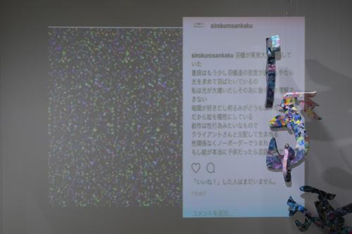 17_11_shiroinekokuroiinusenakanobakemono033