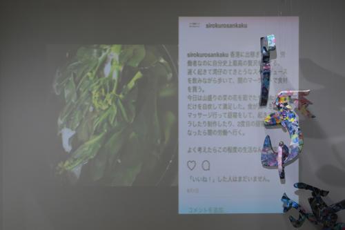 17_11_shiroinekokuroiinusenakanobakemono034