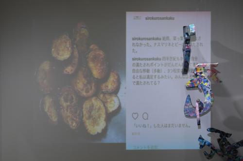 17_11_shiroinekokuroiinusenakanobakemono035