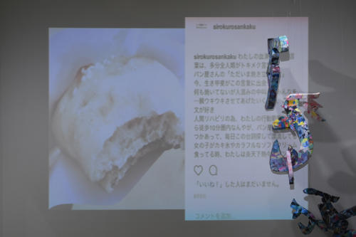 17_11_shiroinekokuroiinusenakanobakemono036