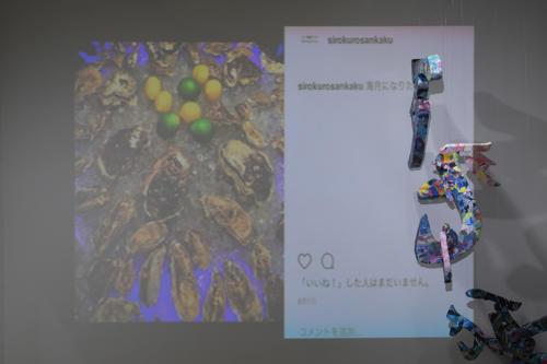 17_11_shiroinekokuroiinusenakanobakemono037