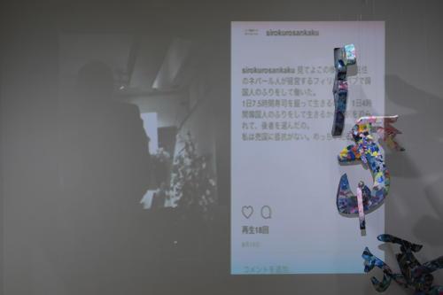17_11_shiroinekokuroiinusenakanobakemono038