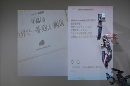 17_11_shiroinekokuroiinusenakanobakemono044