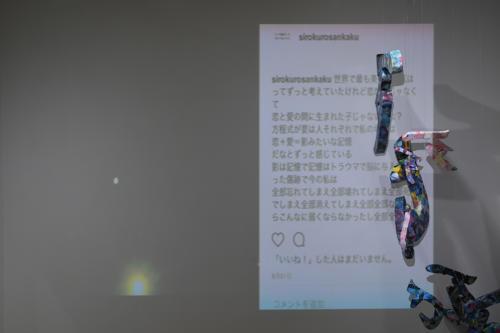 17_11_shiroinekokuroiinusenakanobakemono045