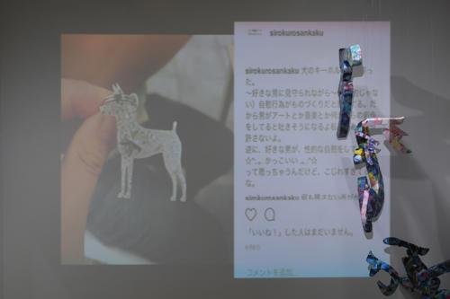 17_11_shiroinekokuroiinusenakanobakemono046