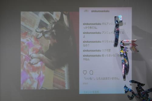 17_11_shiroinekokuroiinusenakanobakemono047