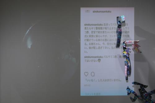 17_11_shiroinekokuroiinusenakanobakemono048
