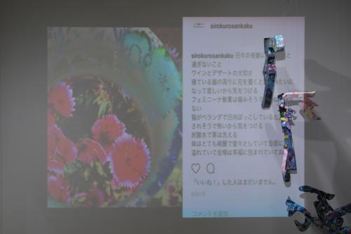 17_11_shiroinekokuroiinusenakanobakemono052