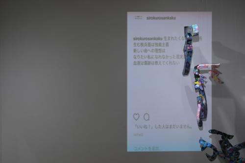 17_11_shiroinekokuroiinusenakanobakemono056