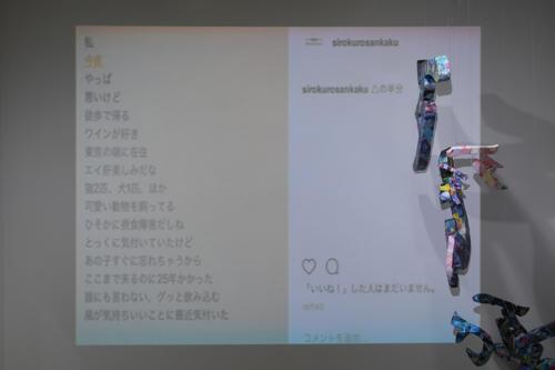 17_11_shiroinekokuroiinusenakanobakemono057