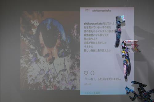17_11_shiroinekokuroiinusenakanobakemono058
