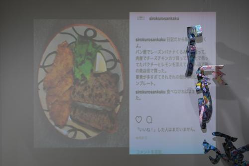 17_11_shiroinekokuroiinusenakanobakemono062