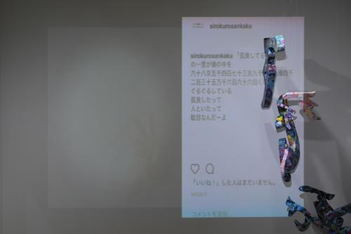 17_11_shiroinekokuroiinusenakanobakemono063