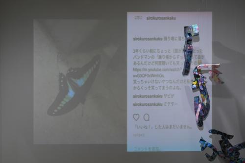17_11_shiroinekokuroiinusenakanobakemono064