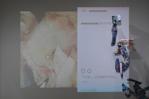 17_11_shiroinekokuroiinusenakanobakemono069