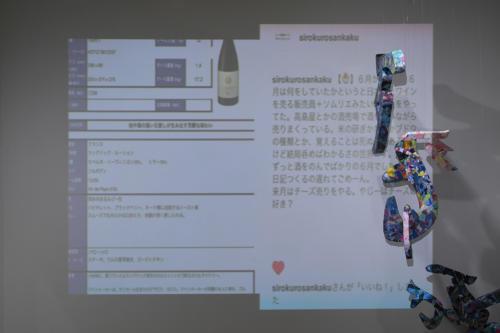 17_11_shiroinekokuroiinusenakanobakemono071