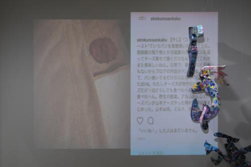 17_11_shiroinekokuroiinusenakanobakemono074