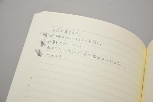 18_02_enamisonoko047