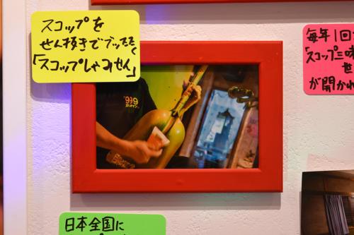 18_02_tokyobetushiten037