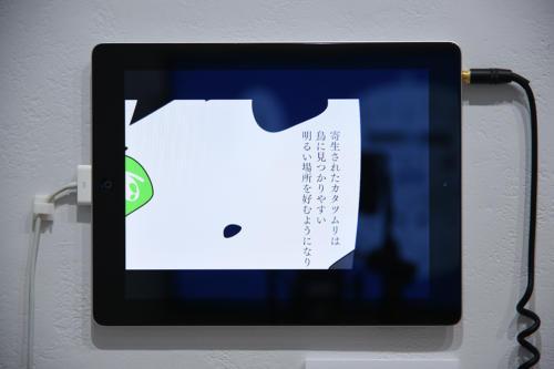 18_08_yomikatamikatanotoraekata051