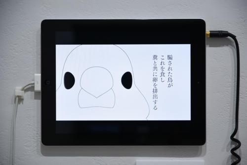 18_08_yomikatamikatanotoraekata053