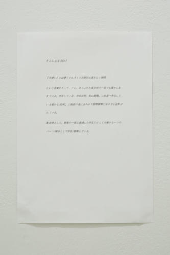 19_02_mayu025