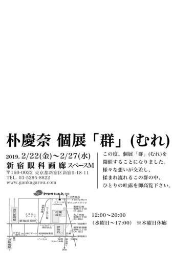 19_02_paku002
