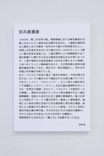 19_07_hoshino016