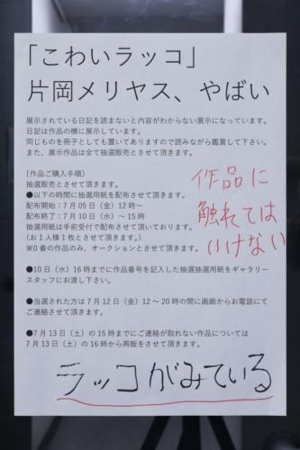 19_07_kowairakko003