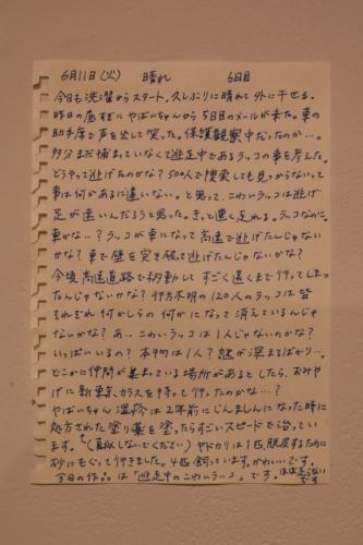 19_07_kowairakko036
