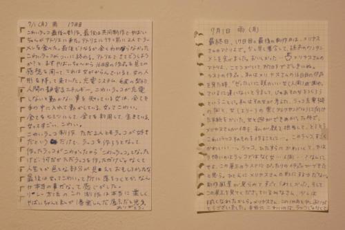 19_07_kowairakko102