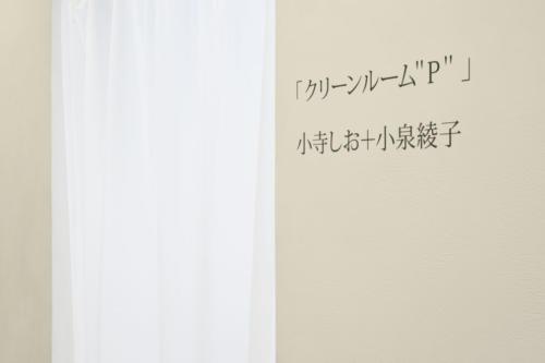 20_03_cleanroom002